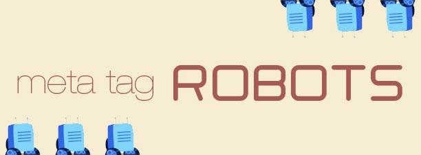 Otimizando seu site com Meta Tag Robots - Digital Prime WS