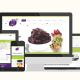Site Trilha do Açaí - Digital Prime Web Solutions Criação de Sites